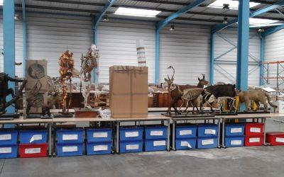 Déménagement et Transport d'œuvres d'art